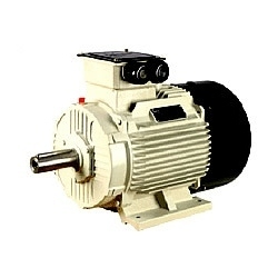 Domestic Electric Motors