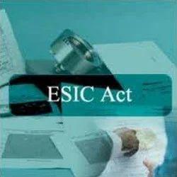 ESIC Corporation Services