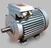 Low Voltage  Induction Motors
