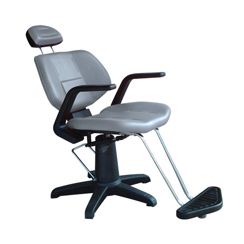 Salon Chairs Styling Furniture Chair Cromy Manufacturer From New Delhi
