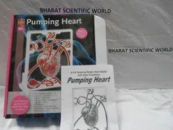 Pumping Heart Work Model