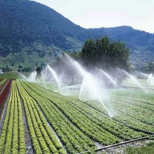 agriculture products sprinkler irrigation system animal