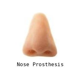 Nose Prosthesis