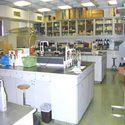 Microbiology and Analytical Laboratory Equipments
