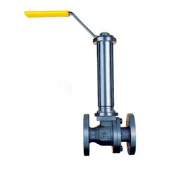 SS/ Carbon Steel Valve with Extended Stem
