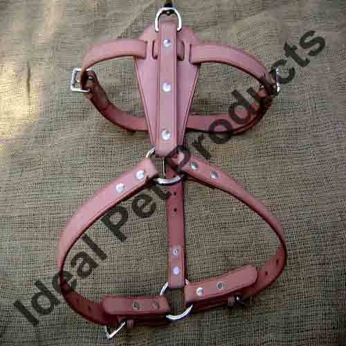 Designer Dog Harnesses