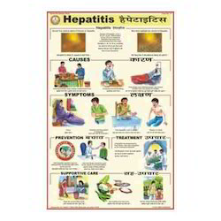 Hepatitis Charts