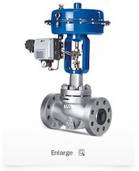 Globe Single Seated 2- Way Valve
