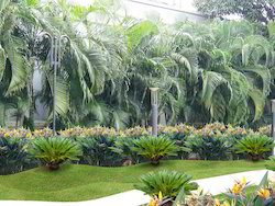 Landscape Designing Services For Townships