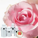 Rose Oil (Hydro Distilled) Absolute