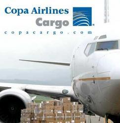 Cargo Shipping Agent