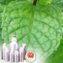 Spearmint Oils