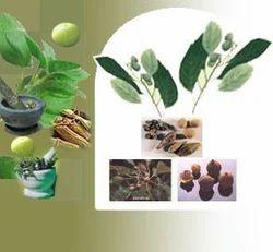 Azadirahita Indica (Neem) Extract