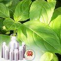 ISO Menthone (Fraction of De-mentholised Oil)
