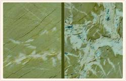 Green Polished Marble Stone