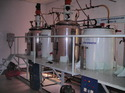 Enzyme Stainless Steel Fermenter, Capacity: 500-1000 L