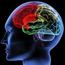 Neurology Surgery