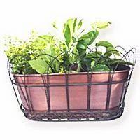 Oval Basket Planter