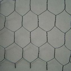 MS Chicken Wire Mesh