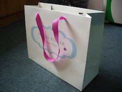 Luxury Logo Printed Paper Bags With Ribbon Handles