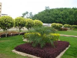 Landscape And Environment Services
