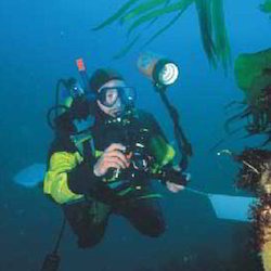 Underwater Quality Inspection Services