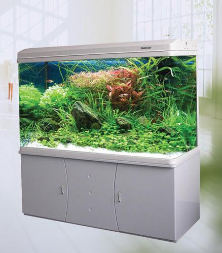 Aquarium Fish Tank Aquarium Tanks Wholesaler From Chennai