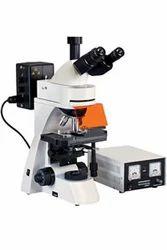 Fluorescence Stereo Microscope