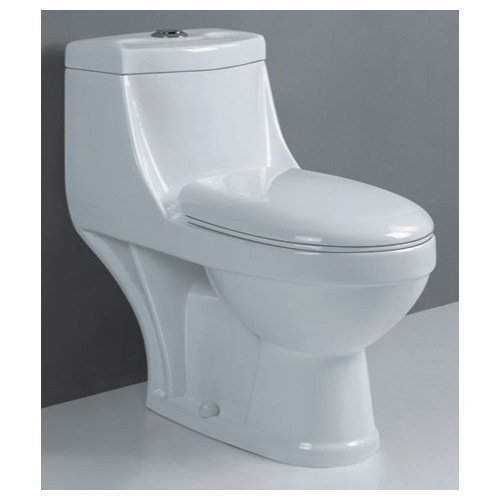 Sanitary Products One Piece Toilet Dual Flush