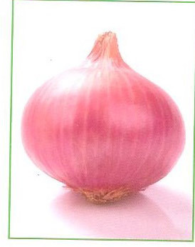 Onion Lalima Seeds