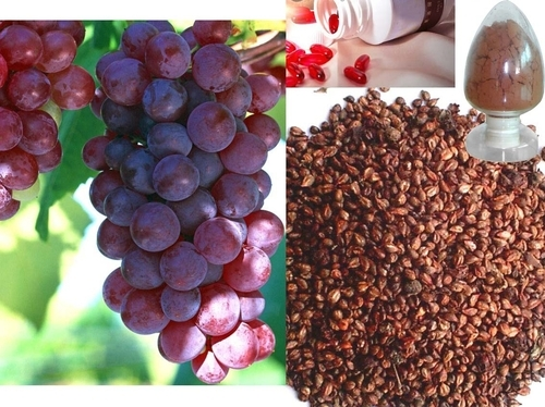 Grape Seed extract reduces risk of cancer