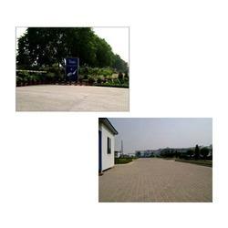 Tilda Riceland