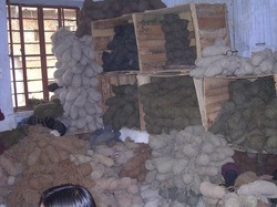 Plying of Woolen Yarn