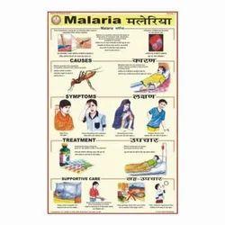 Malaria Diseases Charts