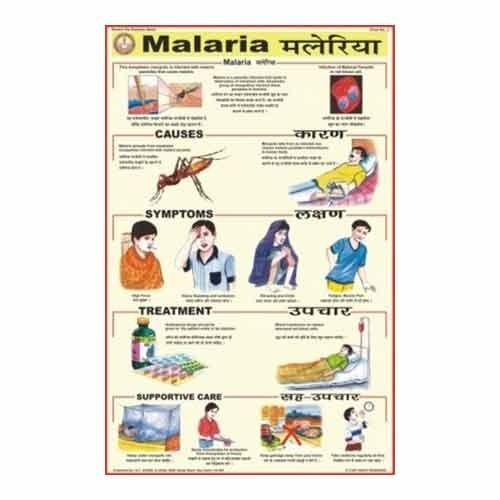 malaria diseases charts view specifications details of medical  malaria diseases charts