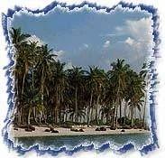 Lakshadweep Island Tour 01
