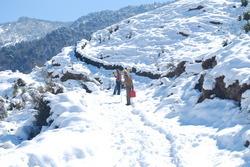 Snow Photo 5