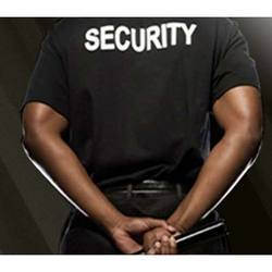 Institutional Security Services