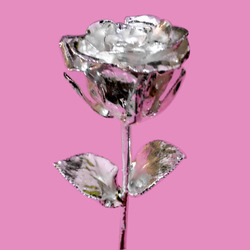 Silver Plated Rose 12 Inches