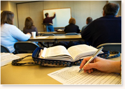 Program Management Consulting Service