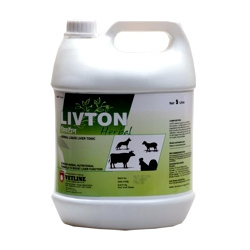 livton herbal liquid herbal liver toner
