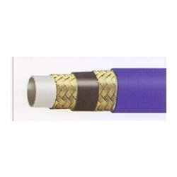 Paint Spray Hose 2 WP