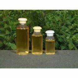 Basil Oil Cures
