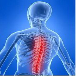 Spine Clinic & Back School