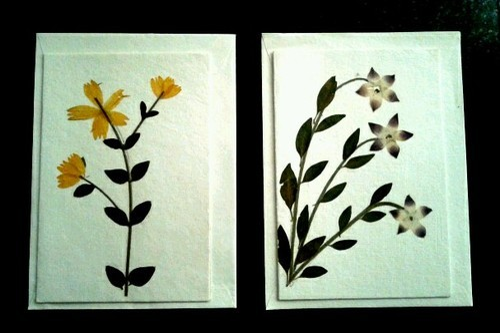 Image result for Leaf Greeting Cards (Art)