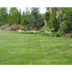 Complete Ground Maintenance Programs