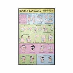 Roller Bandages Charts