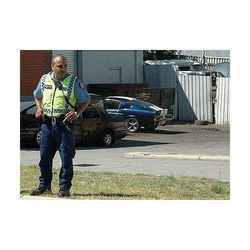 Theft or Robbery Security Services