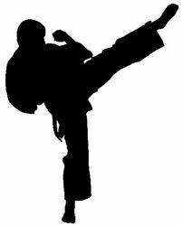 Goju Ryu Karate Courses Services