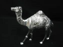 Camel Arbi